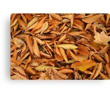 Orange Fall Leaves Canvas Print