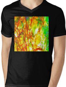 Sunset Ammolite Mens V-Neck T-Shirt