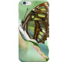 Madame Butterfly - Original iPhone Case/Skin