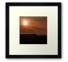 Sun Gazing Framed Print