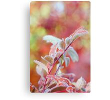 Frozen and Pink Canvas Print