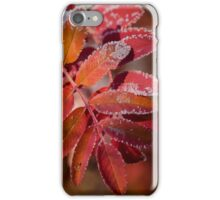 Mountain Ash In Red iPhone Case/Skin