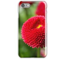 Red and filled cultivated daisies iPhone Case/Skin