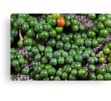green pepper berries Canvas Print