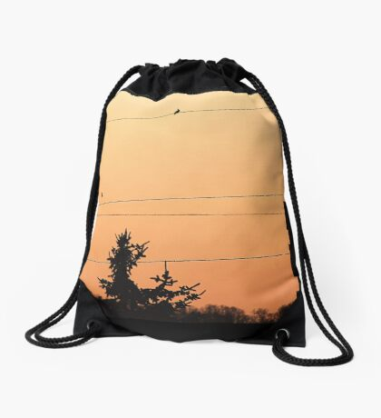 Birds on the wire Drawstring Bag
