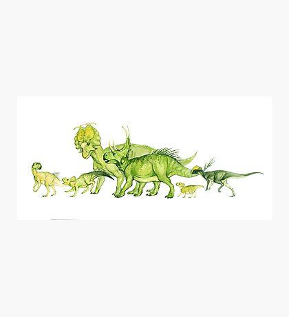 ceratopsians & co. Photographic Print
