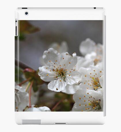macro photo of cherry flowers iPad Case/Skin