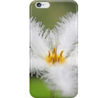 Flower of the  floatingheart nymphoides indica iPhone Case/Skin