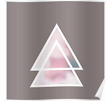 triángulos fondo flores Poster
