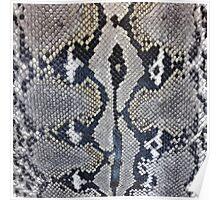 Python snake skin texture design Poster