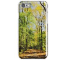 Green Woods Brink of Autumn iPhone Case/Skin