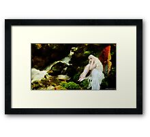 By the brook. Framed Print