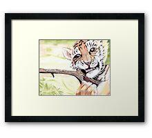 Tigrou Framed Print