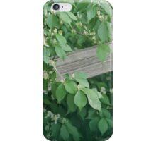 Black Locust iPhone Case/Skin