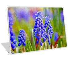 Grape Hyacinths Laptop Skin