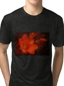 Aged Beauty  Tri-blend T-Shirt
