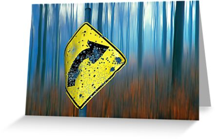 Road Sign  by Hans Kawitzki