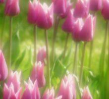 Tulips in the Garden Sticker