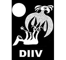 DIIV Photographic Print