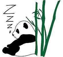 Sleepy Panda ZZZ Photographic Print
