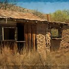 Ghost Town ~ Ruby, Arizona by Lucinda Walter