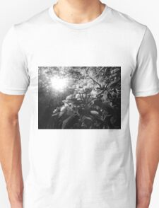 amazing spring morning Unisex T-Shirt