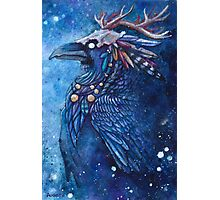Raven Apostle Photographic Print