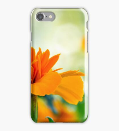 Carroty Marigold iPhone Case/Skin
