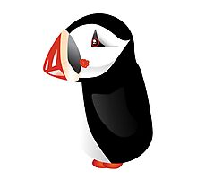 Cute cartoon puffin Photographic Print