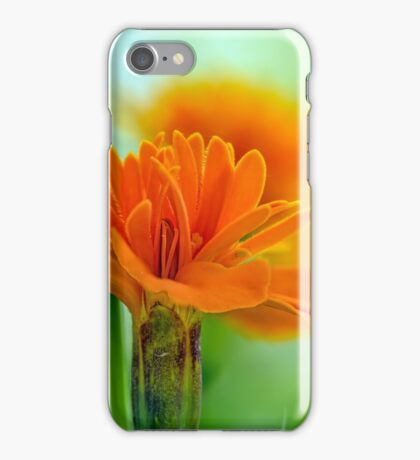 One nice Marigold iPhone Case/Skin