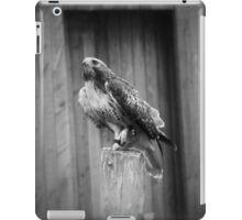 Falcon, Bird of Prey iPad Case/Skin
