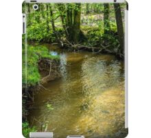 Peaceful stream scene iPad Case/Skin