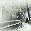 The stranger in the park by Christina Brundage