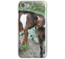Two Goat Kids Playing iPhone Case/Skin