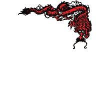 1970's Kung Fu Dragon  Photographic Print