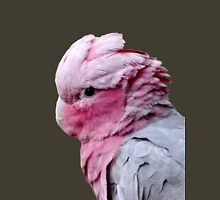 Galah Cockatoo Womens Fitted T-Shirt