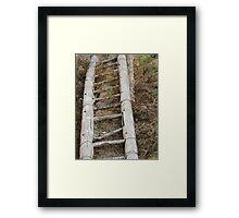 Wooden Bamboo Ladder Framed Print