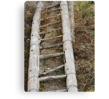 Wooden Bamboo Ladder Canvas Print
