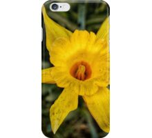 Daffodil Trumpet iPhone Case/Skin