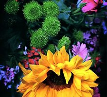 Sunflower by Mike Crawford