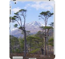 Glen Affric iPad Case/Skin