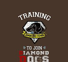 Training to join Diamond Dogs by ShadowFallen