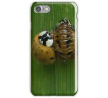 From Pupa to Adult iPhone Case/Skin