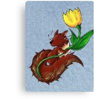 Garden Squirrel Canvas Print