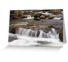 Flowing Veil Greeting Card
