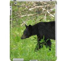 On The Prowl  iPad Case/Skin