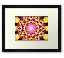 Pink Gold Aster Framed Print