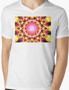Pink Gold Aster Mens V-Neck T-Shirt