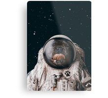 Space Dog Metal Print