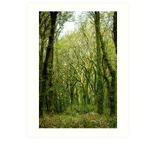 Ramified mossy trees Art Print